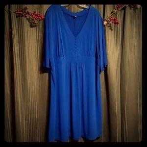 Blue Fashion Bug dress